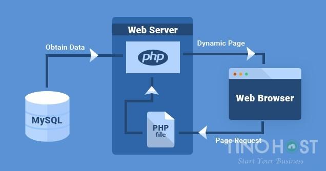 SQL là gì? MySQL là gì? Tầm quan trọng của MySQL server 2