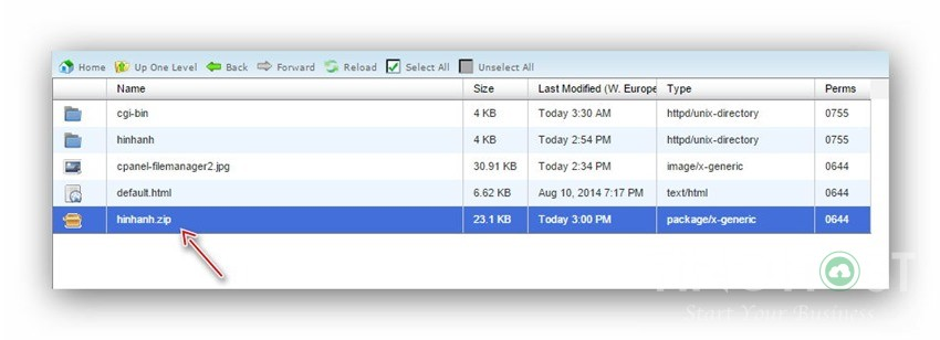 Hướng dẫn cách nén và giải nén trên hosting dùng Cpanel 9