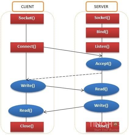 Socket là gì? Web Socket và Unix socket là gì? 5