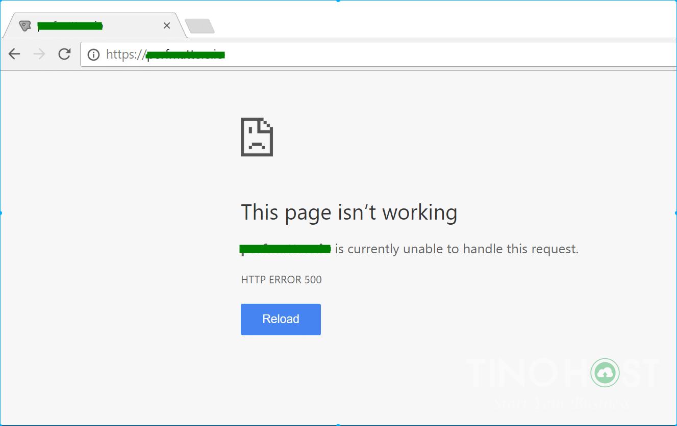 Lỗi trắng trang trong WordPress
