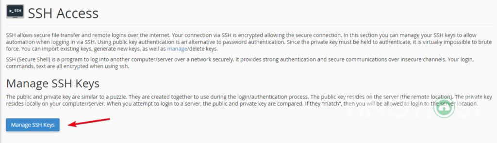 Hướng dẫn truy cập SSH vào Share Hosting Với Putty 20