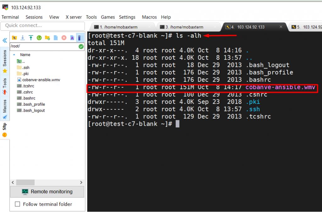 Hướng dẫn sử dụng MobaXterm để SSH vào server linux 28
