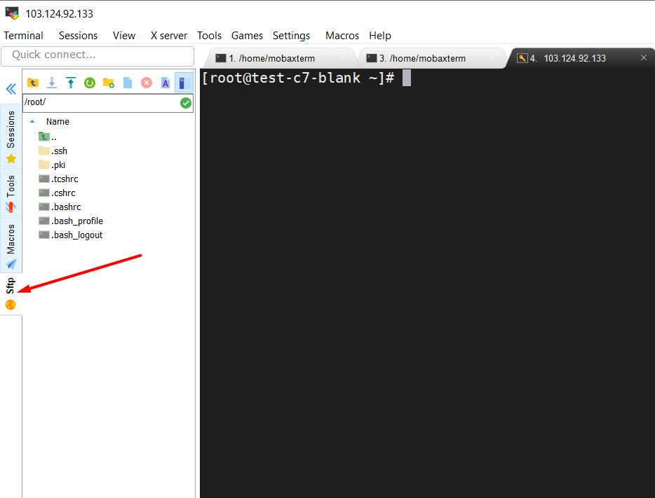Hướng dẫn sử dụng MobaXterm để SSH vào server linux 24