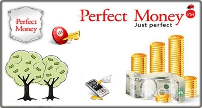 perfect-money-la-gi