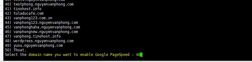 Turn On Google PageSpeed - Bật MOD Google PageSpeed trên Tinoscript 7