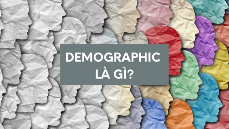 Demographic là gì? Tìm hiểu Demographic trong Marketing 1