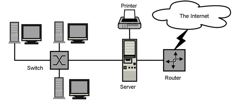 network-la-gi