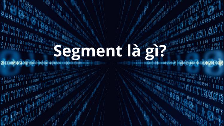 Segment là gì? Mô tả về 4 loại Segment chính 1