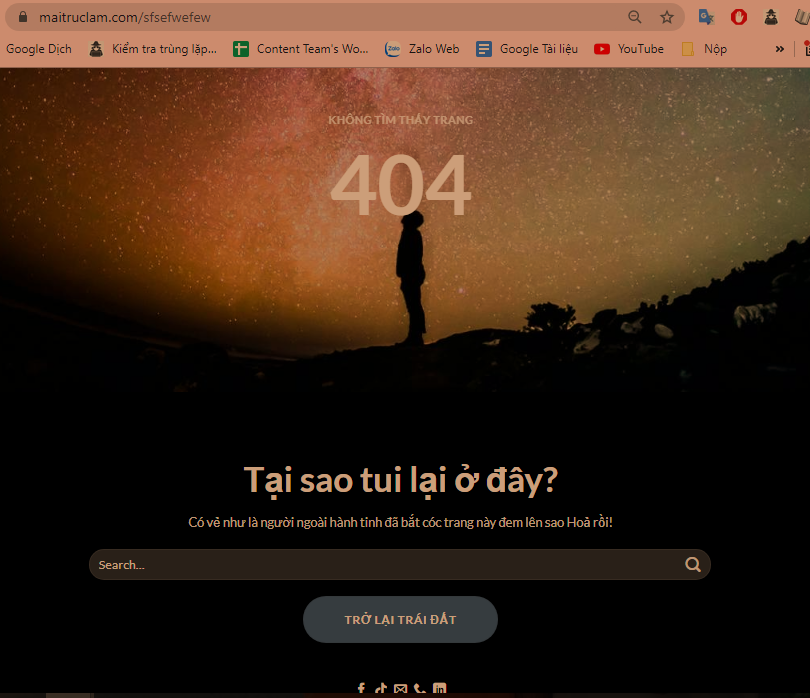 loi-thuong-gap-nhat-trong-wordpress
