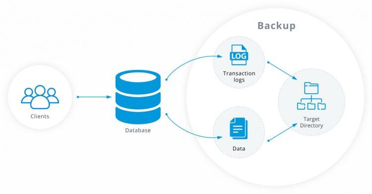 Hướng dẫn thực hiện Full Backup và Restore với Mariabackup 1