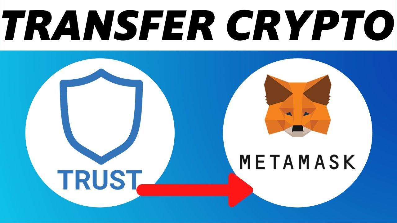 import-vi-trust-voi-metamask