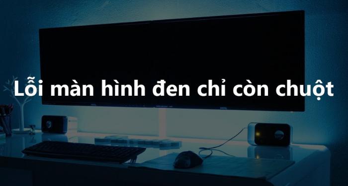 sua-loi-man-hinh-den-chi-co-chuot-tren-may-tinh