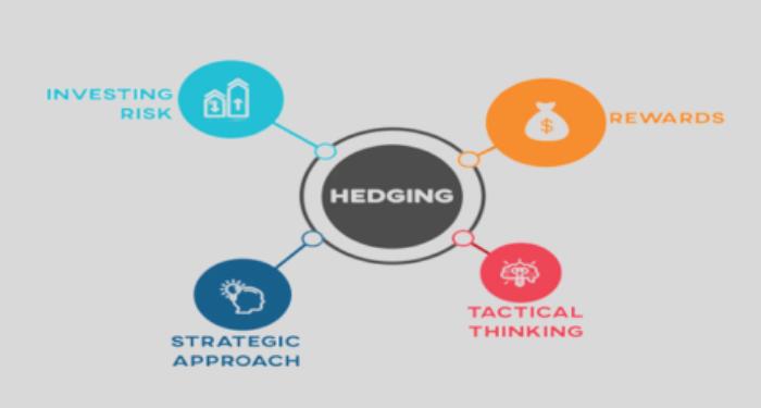 Hedge là gì? 3 chiến lược phòng ngừa rủi ro các nhà đầu tư nên biết 8